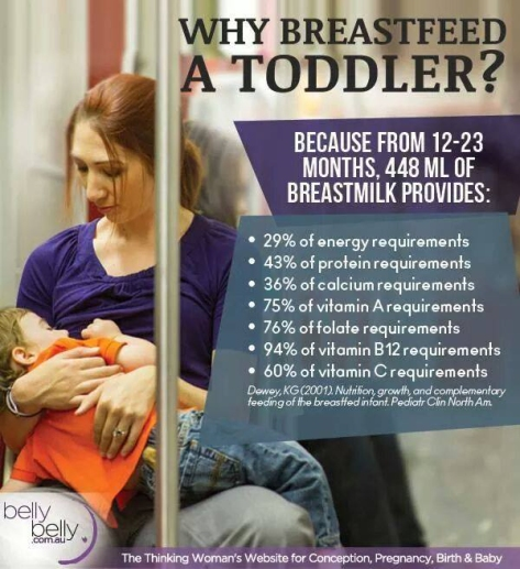 infographic-bfing-toddler